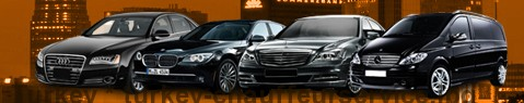 Chauffeur Service Turkey | Private Driver