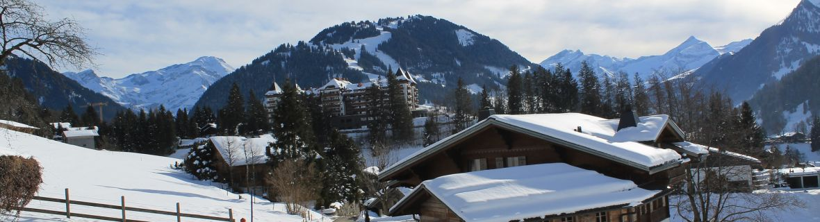 Transfer to Gstaad | Limousine | Minibus | Coach | Car