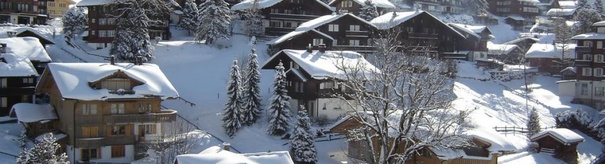 Transfer to Grindelwald | Limousine | Minibus | Coach | Car